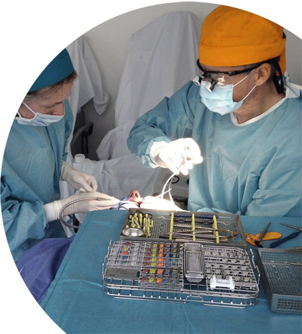 Implantologie bei Zahnarzt Dr. Seiss in Chemnitz
